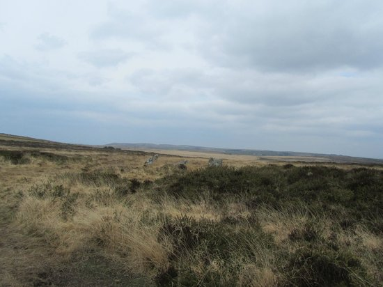 Nine Maidens of Boskednan: The ruined nine maidens circle