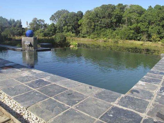 Lily Pond Country Lodge: het zwembad met de lily pond