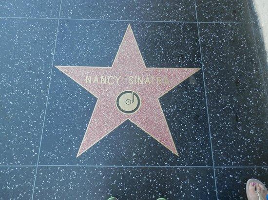Amazing LA Tours: Hollywood walk of fame