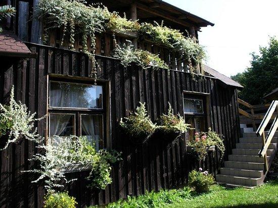Protea Hotel: Green garden