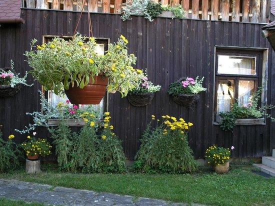 Protea Hotel: Green garden in front of restaurant