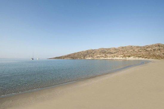 Dimitris Rooms : Manganari beach.