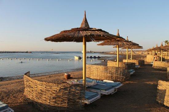 Dana Beach Resort : Les transats de la plage
