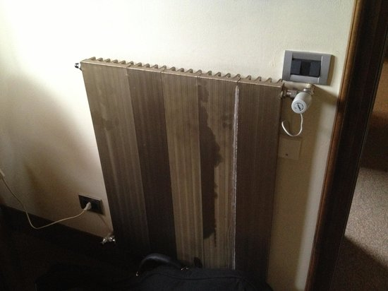Hotel Palace Wellness & Beauty: The radiator  - old but functioning