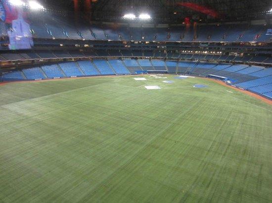 Toronto Marriott City Centre Hotel: Vista del estadio Rogers desde la cafetería
