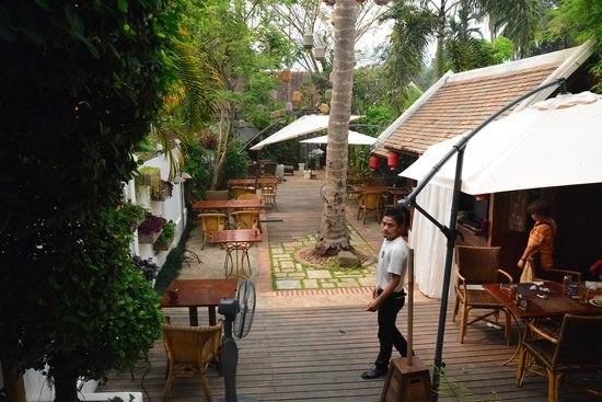 Coconut Garden: Day view of back courtyard.