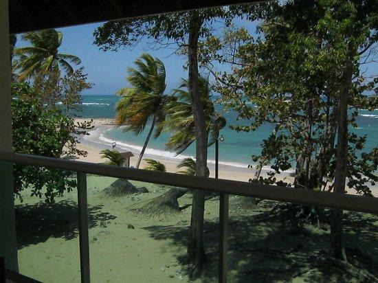 Grand Paradise Playa Dorada: Taken from my room