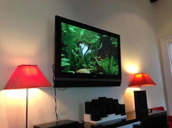 Rocpool Reserve hotel & Chez Roux: Fish tank ;-)