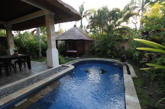 """Furama Villas & Spa Ubud: Vue sur la piscine privée et sur le """"salon de massage"""""""