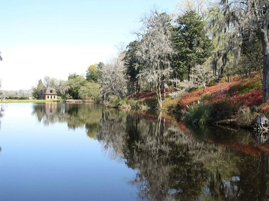 Inn at Middleton Place: Lake
