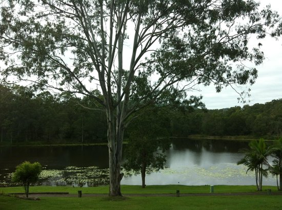Cedar Lake Country Resort : surroundings