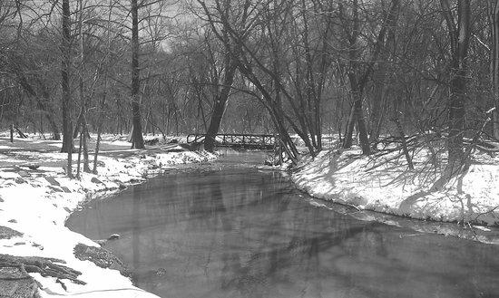 Lemon Park: bridge on hiking trail