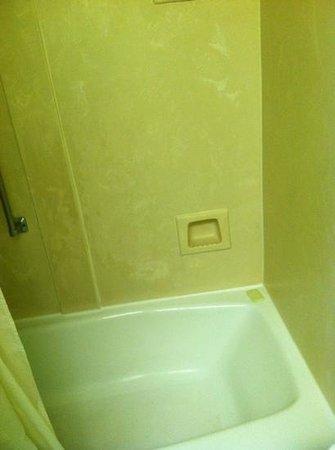 Seralago Hotel and Suites: bath tub