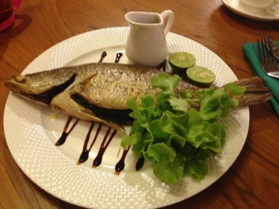 Malina: fish