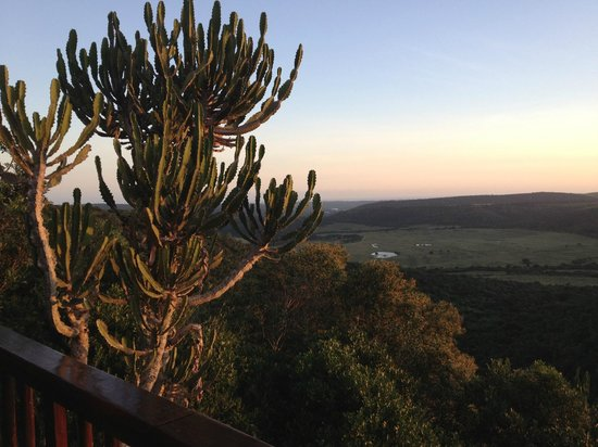 Kariega Game Reserve - All Lodges: View from Restaurant Area