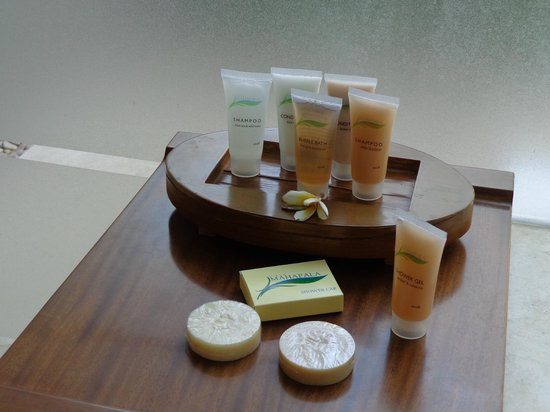 Villa Mahapala: great toiletries