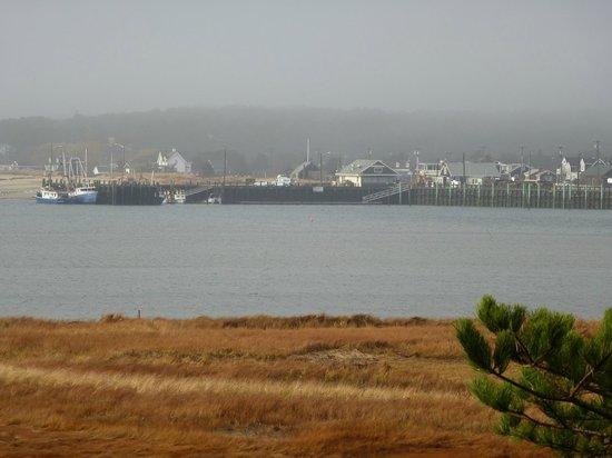 Oyster Cove B&B On Wellfleet Harbor: Marina, fog from our main deck.