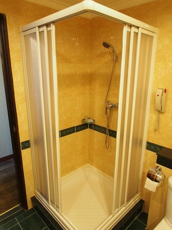Windsor Plaza Hotel: Bathroom Shower Stall