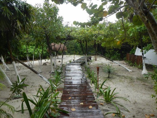 Al Cielo Hotel: Back garden, from bedroom
