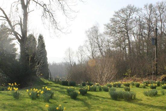Inverinan Mor Luxury Country House Bed & Breakfast: Gardens