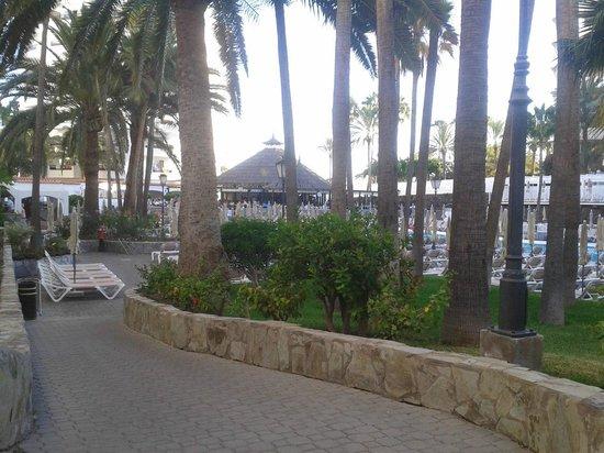 Hotel Servatur Waikiki: Walk along to pool