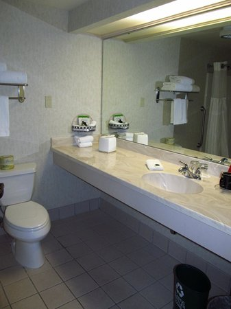 Seven Feathers Casino Resort: Bathroom