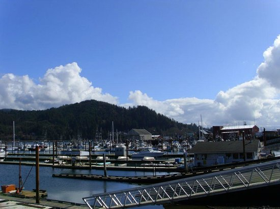 Harborview Inn & RV Park: Garibaldi Marina across the street from the Harborview