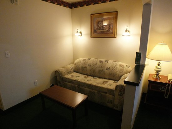 FairBridge Inn & Suites Dupont: Pull out sofa