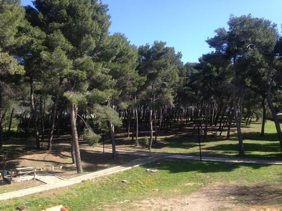 Sassari, Włochy: vista del parco