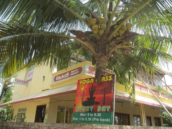 Hotel Oasis Beach Resort/ Yogaclass