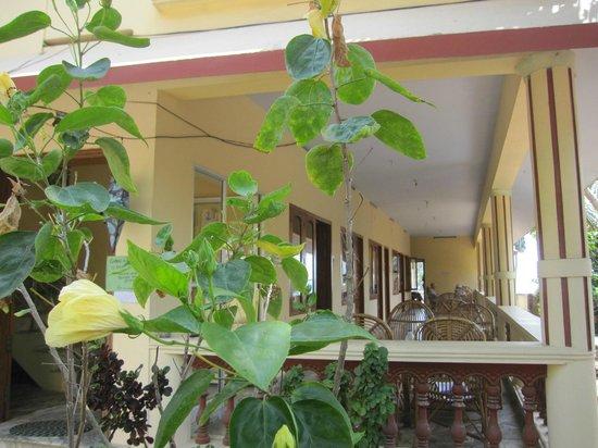 Oasis Beach Resort: Hotelverandan