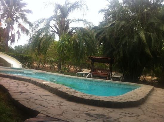 Hotel Flying Crocodile: Pool ohne Menschen