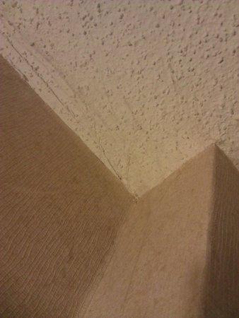 DoubleTree by Hilton Hotel Philadelphia - Valley Forge: Cobwebs #2