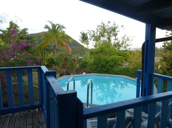 Coeur Caraibes: la piscine privative