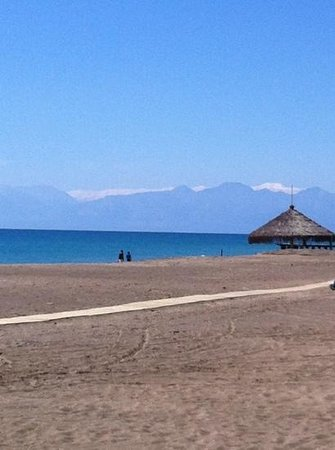 Crystal Tat Beach Golf Resort & Spa: view from the beach