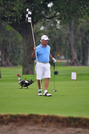 Hollywood Beach Golf Resort: golfers getting advise from our residents