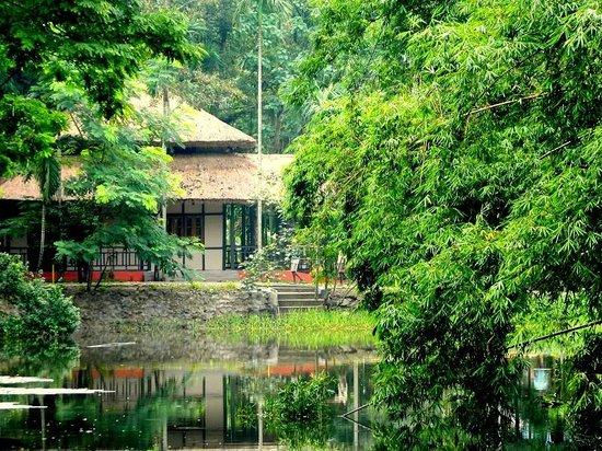 Infinity Resort Kaziranga : Lake view
