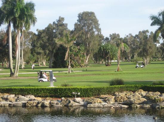 Hollywood Beach Golf Resort: Views from Rudy's Pub & Restaurant's veranda