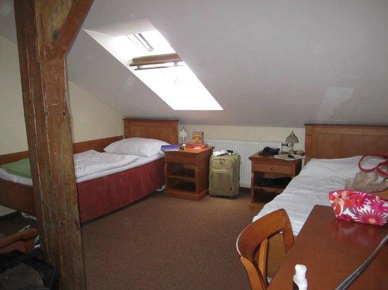 Pension Brezina : Last Floor Room