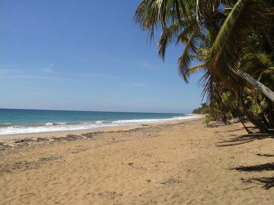 Parador MaunaCaribe: playa, arena y sol