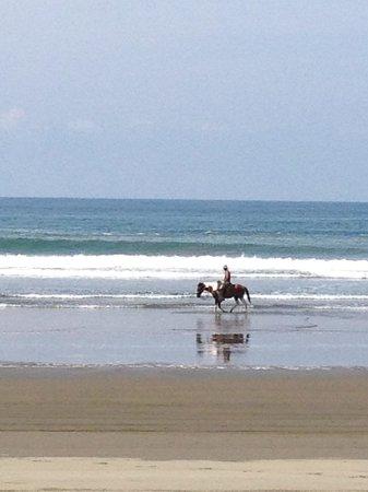 Rafiki Beach Camp: The beach