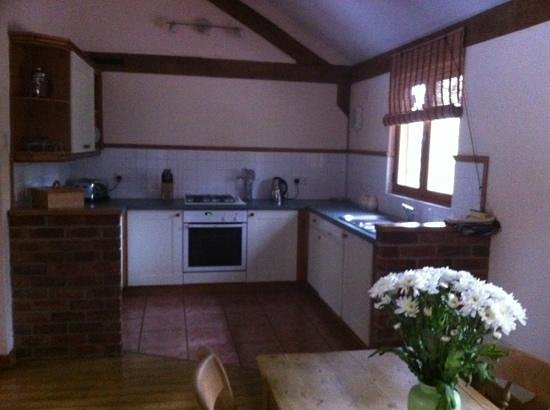 Griffon Forest Lodges: kitchen area and nice to arrive to flowers.