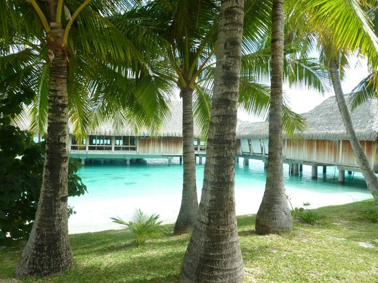 St. Regis Bora Bora Resort: Walking to the room
