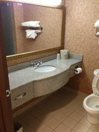 Holiday Inn Express Syracuse / Fairgrounds: Typical bathroom