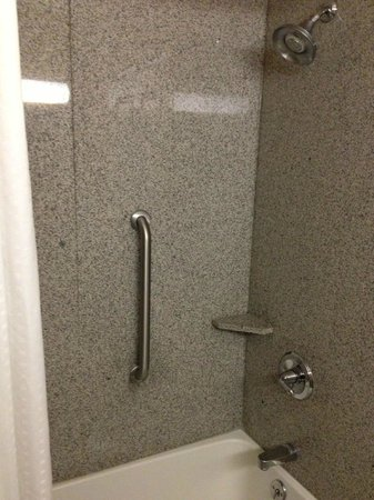 Holiday Inn Express Syracuse / Fairgrounds: Shower