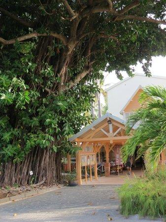 Carayou Hotel & Spa: L'entrée du restaurant