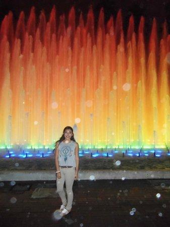 Mariel Hotel & Apartments: Water Sculpture Park