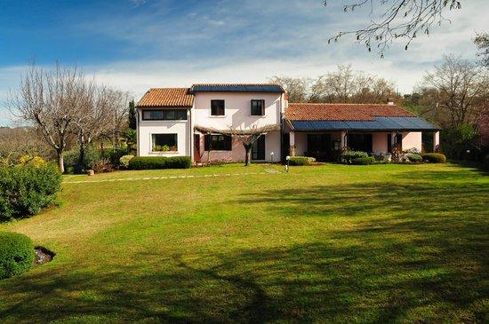 B&B Villa Beatrice: Beautiful garden