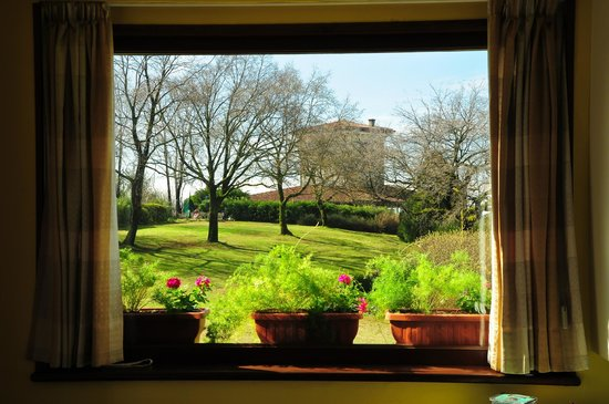 Bed and Breakfast Villa Beatrice: Beautiful garden