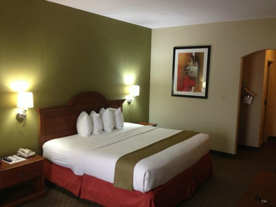 BEST WESTERN Rayne Inn: Guestroom with King bed